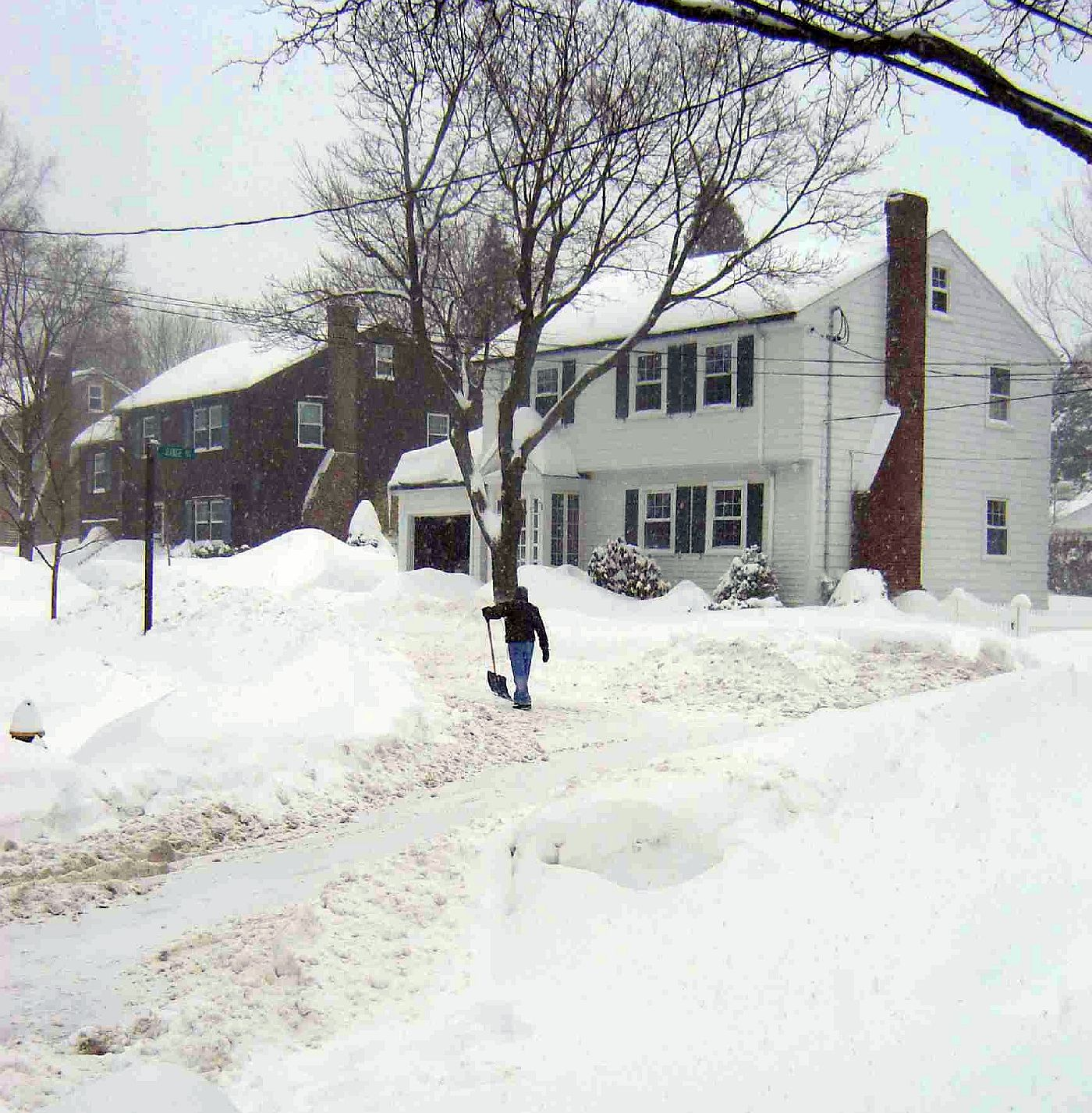 Peabody Slope, Dorchester - Blizzard 2015