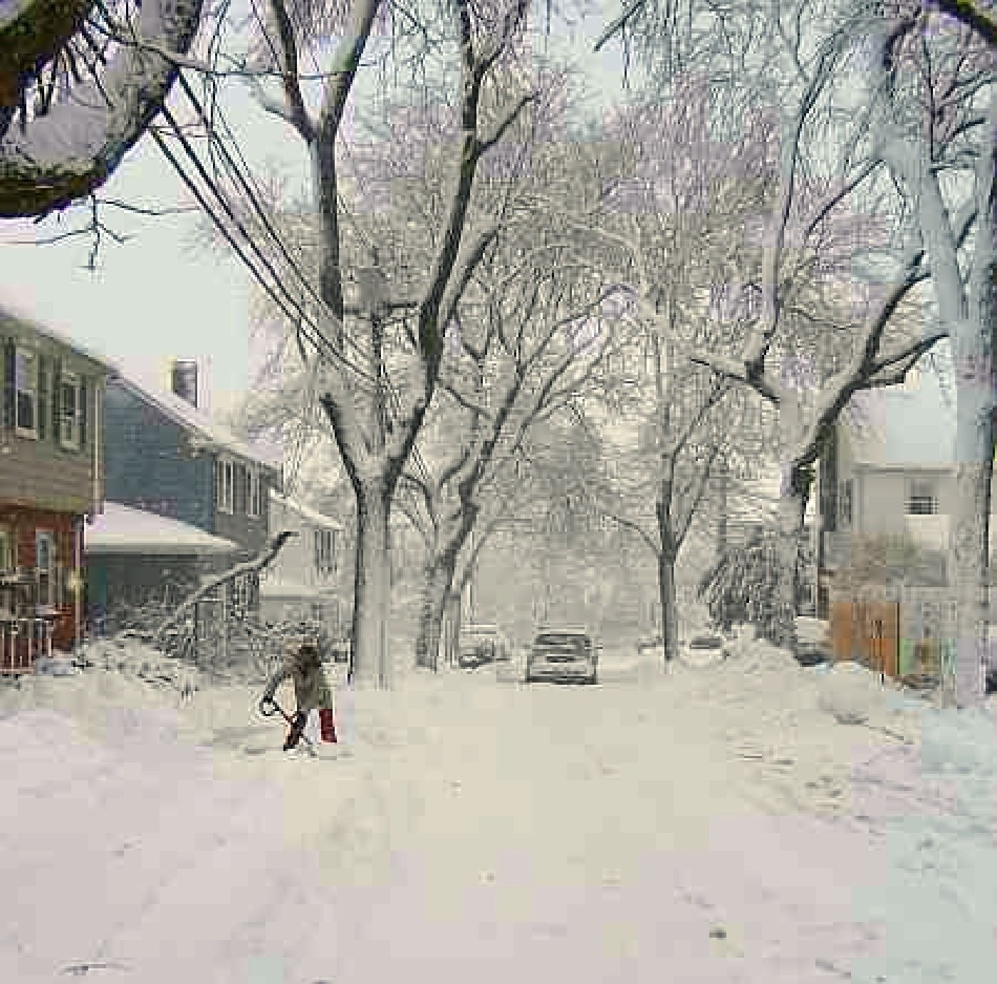 Peabody Slope, Dorchester - Blizzard 2011